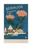 Bermuda in Oleander Time  Travel Poster