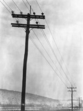 Telephone Poles in Snowy Weather