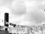 Laundry Drying on Clotheslines