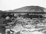 Bblotph Damasus  General View