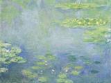Les Nymphéas Giclée par Claude Monet