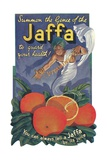 Jaffa Orange Crate Label