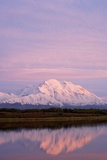 Mount Mckinley at Sunset in Denali National Park