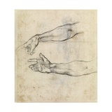 Study of Two Arms for 'The Drunkenness of Noah' in the Sistine Chapel