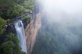 Fog over Fitzroy Falls in Morton National Park
