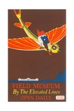 Poster for Field Museum with Children on Giant Koi