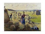 Harvesting Hay  Eragny