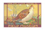Poster for Field Museum with Quail Giclée