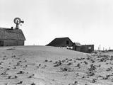 Dustbowl Farm