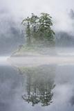 Rainforest Islands in Fog in Alaska