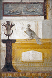 Italy  Naples  Naples Museum  from a house in the Insula Occidentalis in Pompeii  Wall Decoration