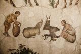 Turkey  Istanbul  Great Palace Mosaic Museum  Roman Mosaic  Shepherd Milking A Goat
