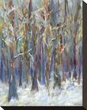 Winter Angels in the Aspen