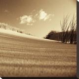 Drifting Sands III