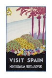 Visit Spain - Mediterranean Fruits and Flowers Travel Poster