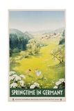 Springtime in Germany Poster