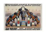 Adam Forepaugh's Great Aggregation Poster Giclée par Matt Morgan