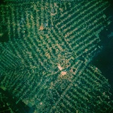 Brazilian Agricultural Fields from Space