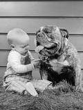 1950s-1960s Baby Sitting Playing with Bulldog Studio