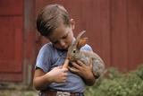 Boy Feeding a Rabbit