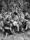 1950s Boy and Girl Sitting in Front of Corn Stalks Watching Father Carve Pumpkin