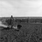 1960s Cowboy Rodeo Rider Competitor on Horse Chasing Calf Roping Event Skill Sport