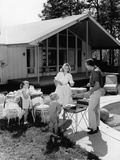 1950s Family Grilling Hamburgers Beside Pool in Backyard Cookout