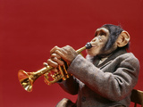 1960s Monkey Chimpanzee Wearing Suit and Tie Playing Trumpet