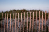 Fence in Sand Dunes  Cape Cod  Massachusetts