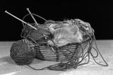 1950s Sleeping Kitten Sleeping in Knitting Yarn Basket