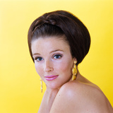1960s Glamorous Young Woman Brunette Big Hair Teased Bouffant Hairstyle