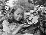 1950s Pretty Little Girl Smiling at Hibiscus Flower and Butterfly in Garden