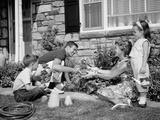 1960s Family Yard Garden