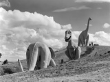 1950s Dinosaur Park South Dakota Three Dinosaur Statues on Hillside