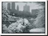 New York City In Winter IX