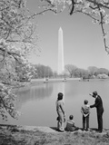 Family Mother Father Two Boys in Washington DC Looking at Washington Monument Amid Cherry Blossoms