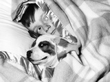 Boy Hiding under Blanket in Bed with Dog