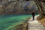 Visitor on Wooden Walkway Path over Crystal Clear Waters of Plitvice Lakes National Park