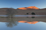 Rising Sun Catching the Summit of Towering Orange Sand Dunes with Reflections