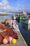 Fishing Boats in Harbour  Ponta Delgada Port  Sao Miguel Island  Azores  Portugal  Atlantic  Europe