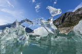 Glacial Ice Calved from the Sawyer Glacier