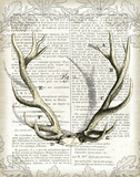 Regal Antlers on Newsprint I