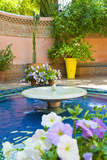 Fountain and Flowers in the Majorelle Gardens (Gardens of Yves Saint-Laurent)