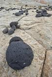 Volcanic Boulders on Navajo Sandstone