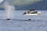 Fishermen Watching Humpback Whales in Quatsino Sound