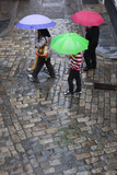 Rain on Cobbled Street  Seville  Andalucia  Spain  Europe