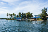 The Harbour of Koror  Palau  Central Pacific  Pacific