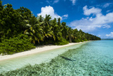 Paradise White Sand Beach in Turquoise Water on Ant Atoll  Pohnpei  Micronesia  Pacific