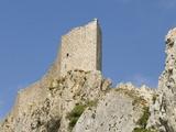 Chateau De Peyrepertuse  a Cathar Castle  Languedoc  France  Europe