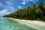 Paradise White Sand Beach and Turquoise Water on Ant Atoll  Pohnpei  Micronesia  Pacific